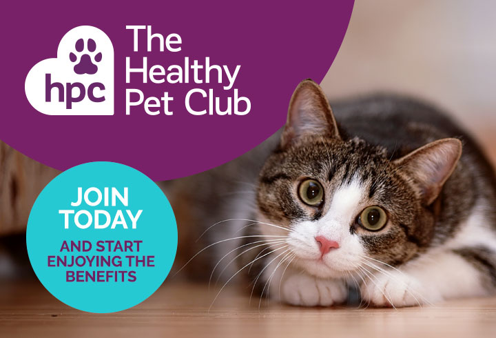 Join the The Healthy Pet Club today